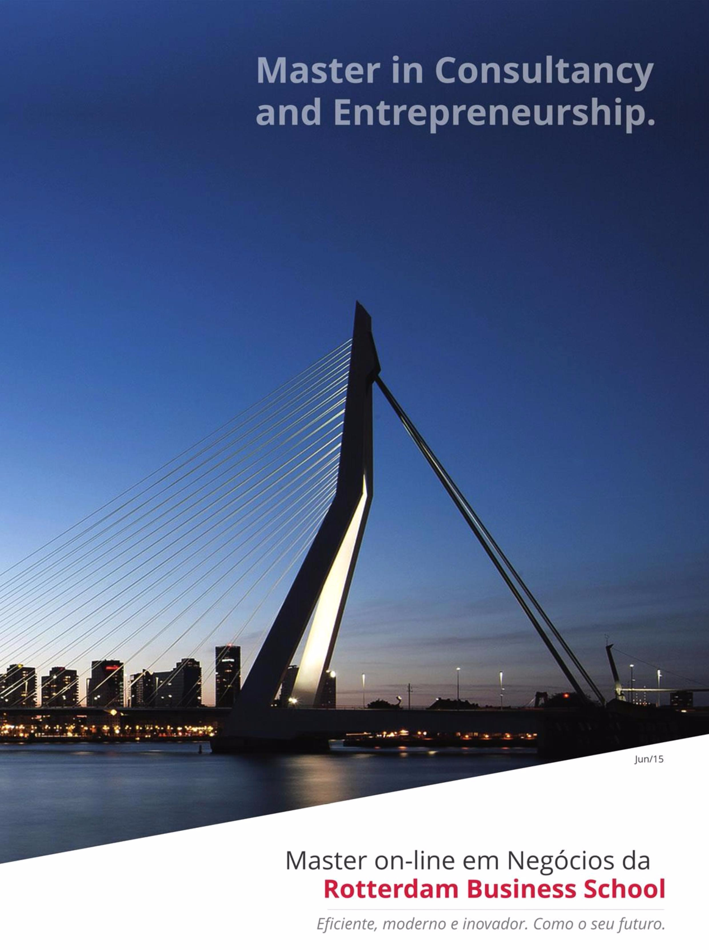 modulos-master-in-consultancy-and-entrepreneurship-rotterdam-business-school_11.jpg