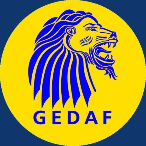 Organizador GEDAF Finanças & Empreendedores - Institucional