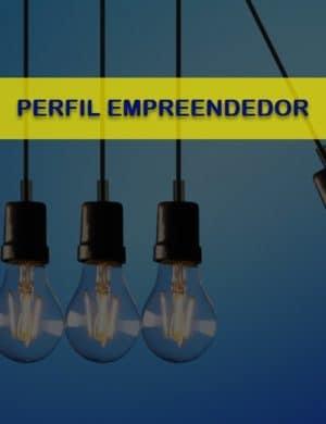 Análise do Perfil Empreendedor R1 (GEDAF, 2020)